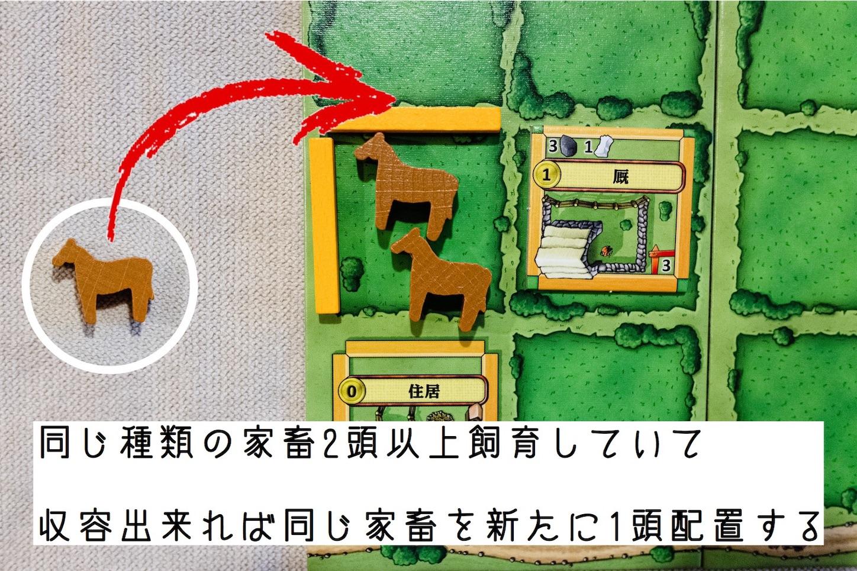 f:id:board_kuma:20200716014356j:image