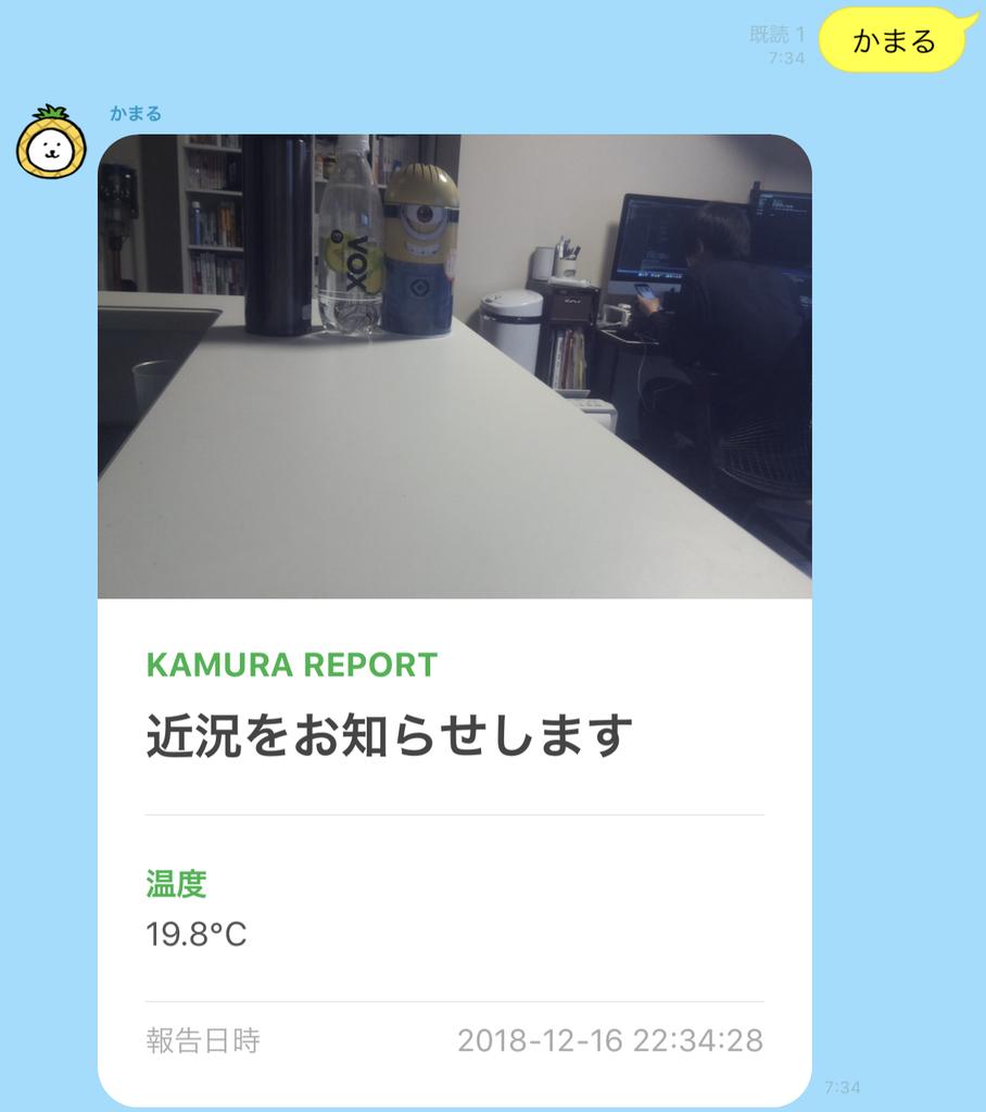 f:id:bobchan1915:20181217073525j:plain