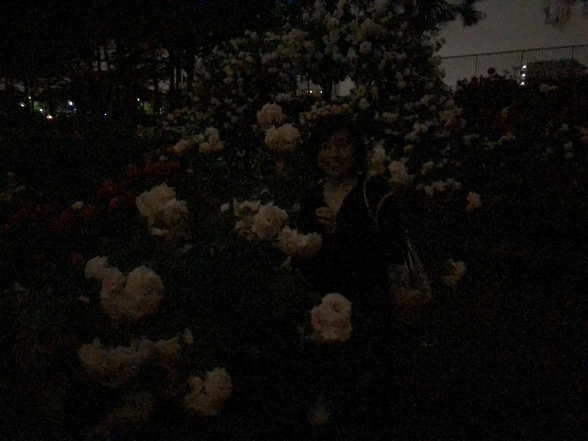 f:id:bobyuki:20190531203448j:plain