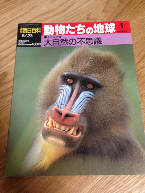 f:id:bochibochidou:20160709162830j:plain