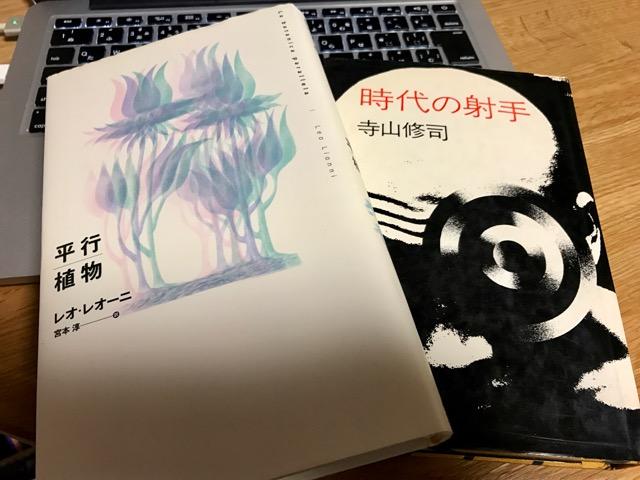 f:id:bochibochidou:20170303195400j:plain