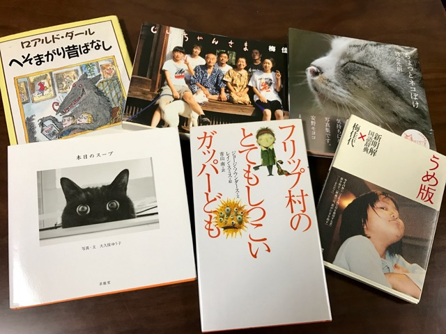f:id:bochibochidou:20170308201932j:plain