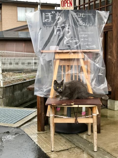 f:id:bochibochidou:20170701220404j:plain