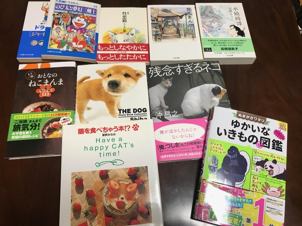 f:id:bochibochidou:20190622200523j:plain