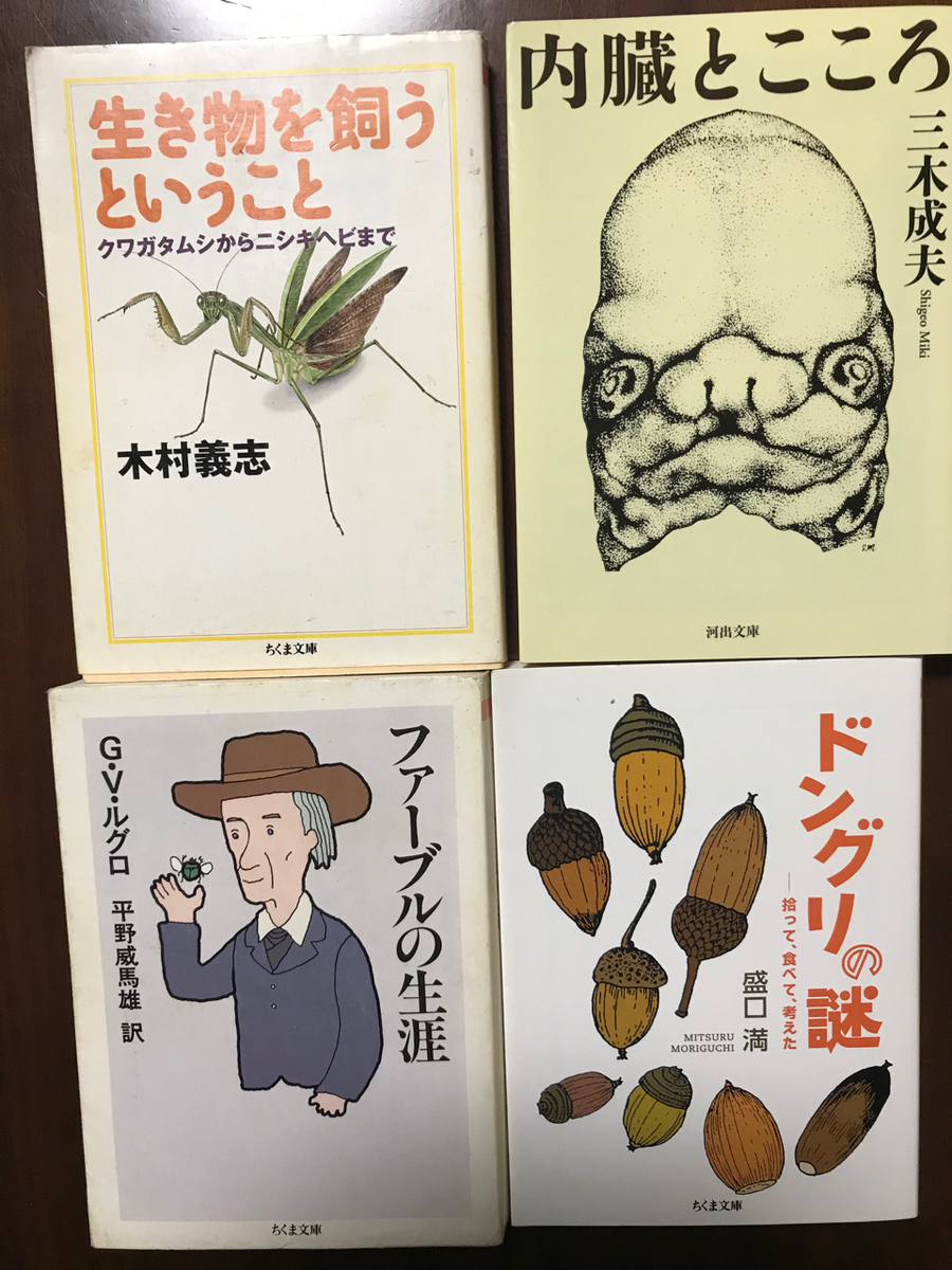 f:id:bochibochidou:20200401200641j:plain