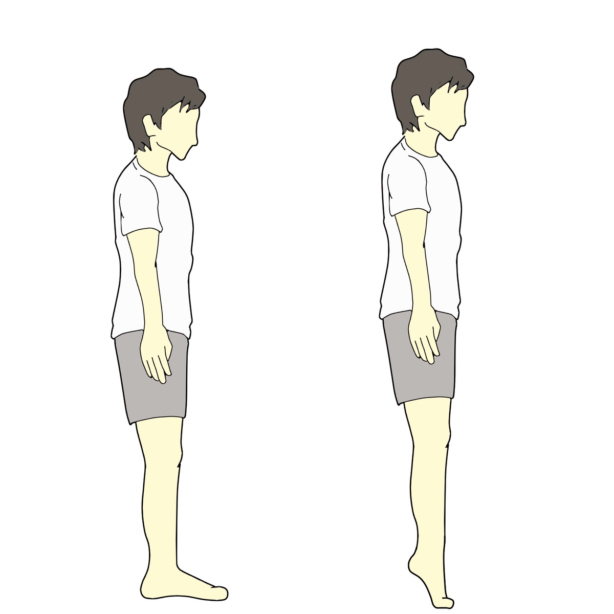 f:id:bodymakerpt:20200528213330j:plain