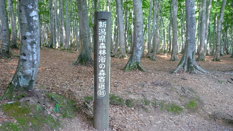 f:id:boianuf:20120831095347j:image