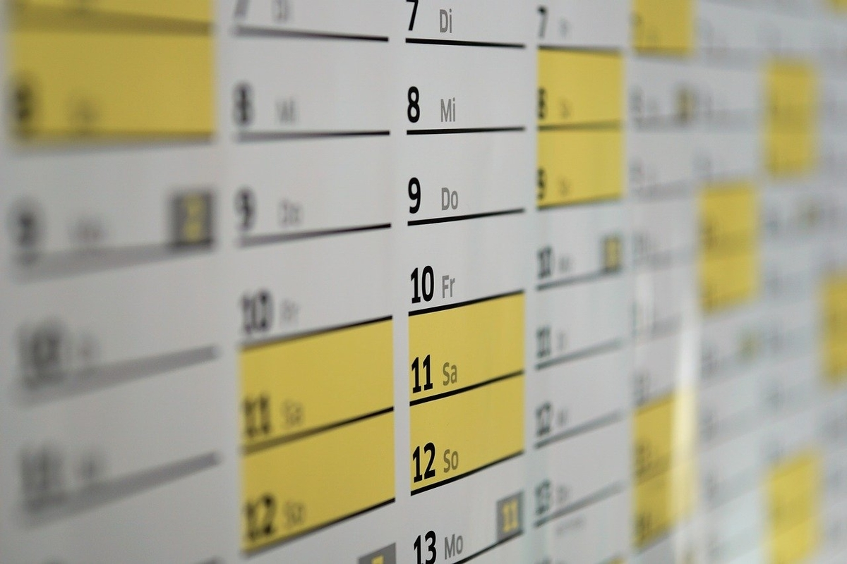 決算発表日の確認