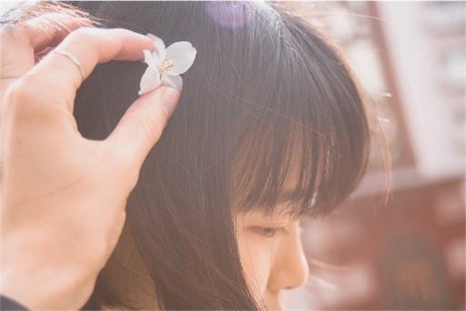 f:id:bokunarino:20180421083724j:image