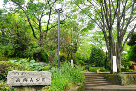 f:id:bokunoikinuki:20161004172004j:plain