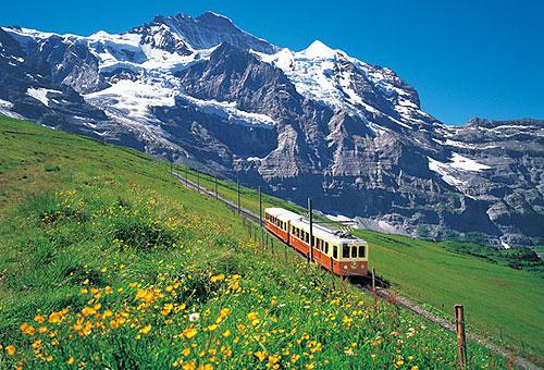 「スイス 平和」の画像検索結果