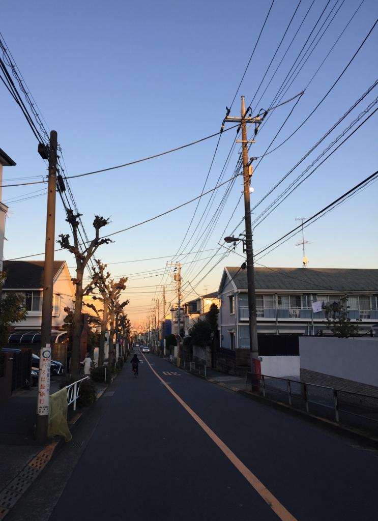 f:id:bokunoikinuki:20170110181609j:plain