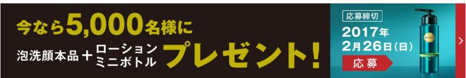 f:id:bokunoikinuki:20170201011216p:plain