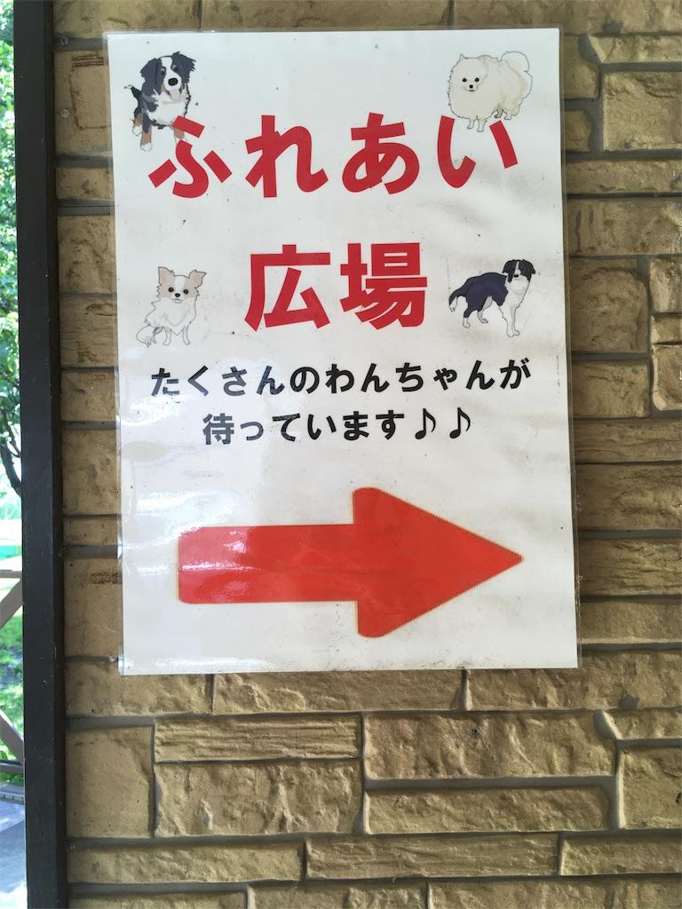 f:id:bokunotenshi_66:20180710212837j:image