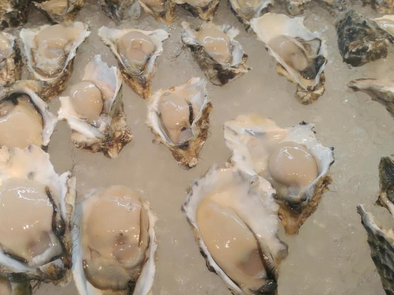 泊いゆまち:好きな牡蠣を選べます