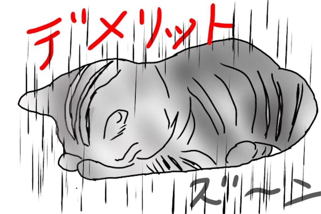 デメリットの文字に泣いているネコのイラスト