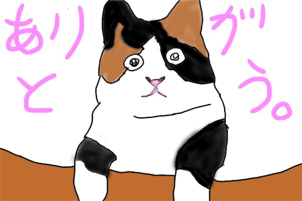 ありがとうと感謝しているネコのイラスト