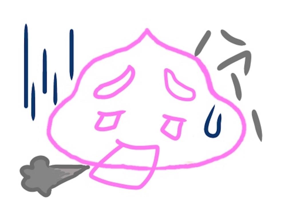 f:id:bokutokazokutosonota:20181231080329j:image