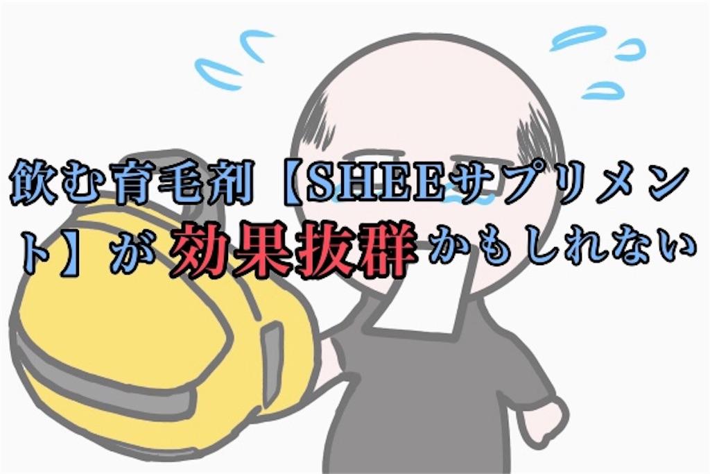 飲む育毛剤SHEEサプリメントの記事画像