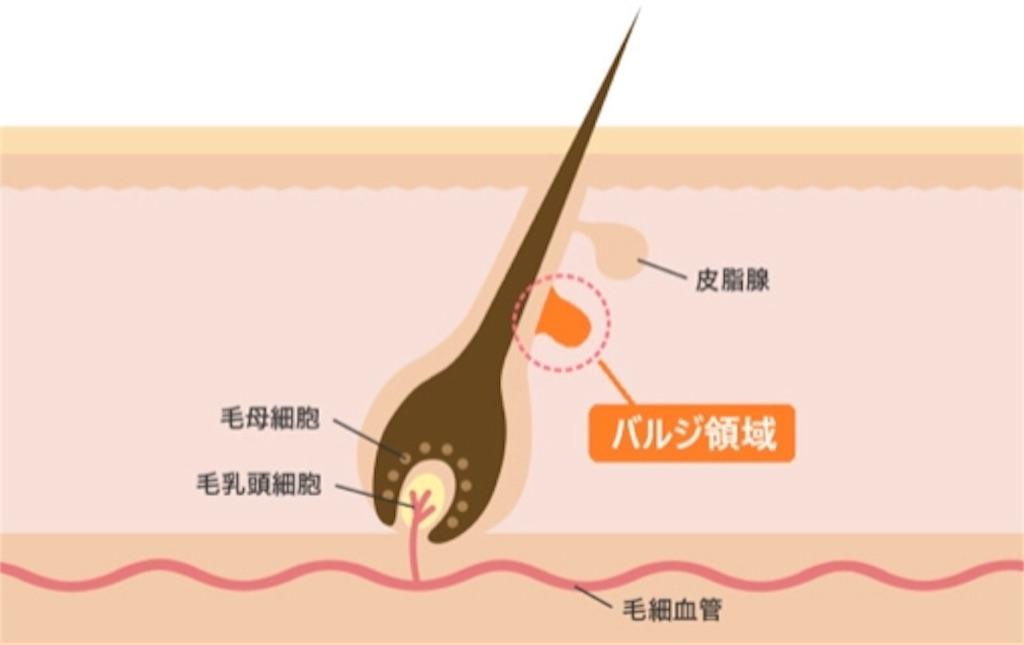 f:id:bokutokazokutosonota:20190608152816j:image