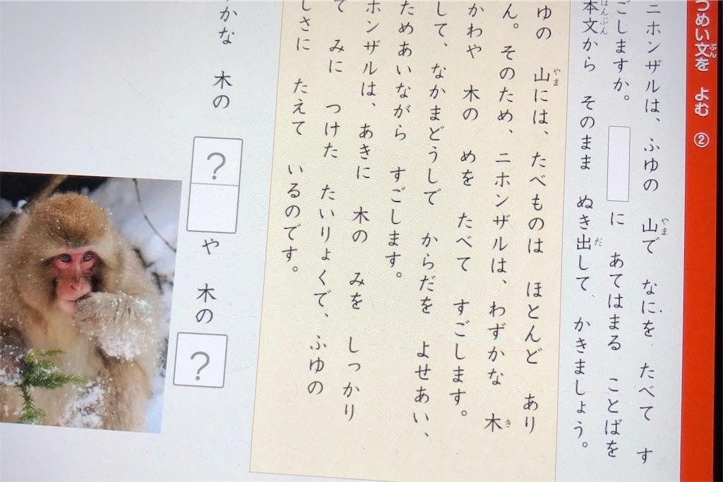 f:id:bokutokazokutosonota:20200229234517j:image