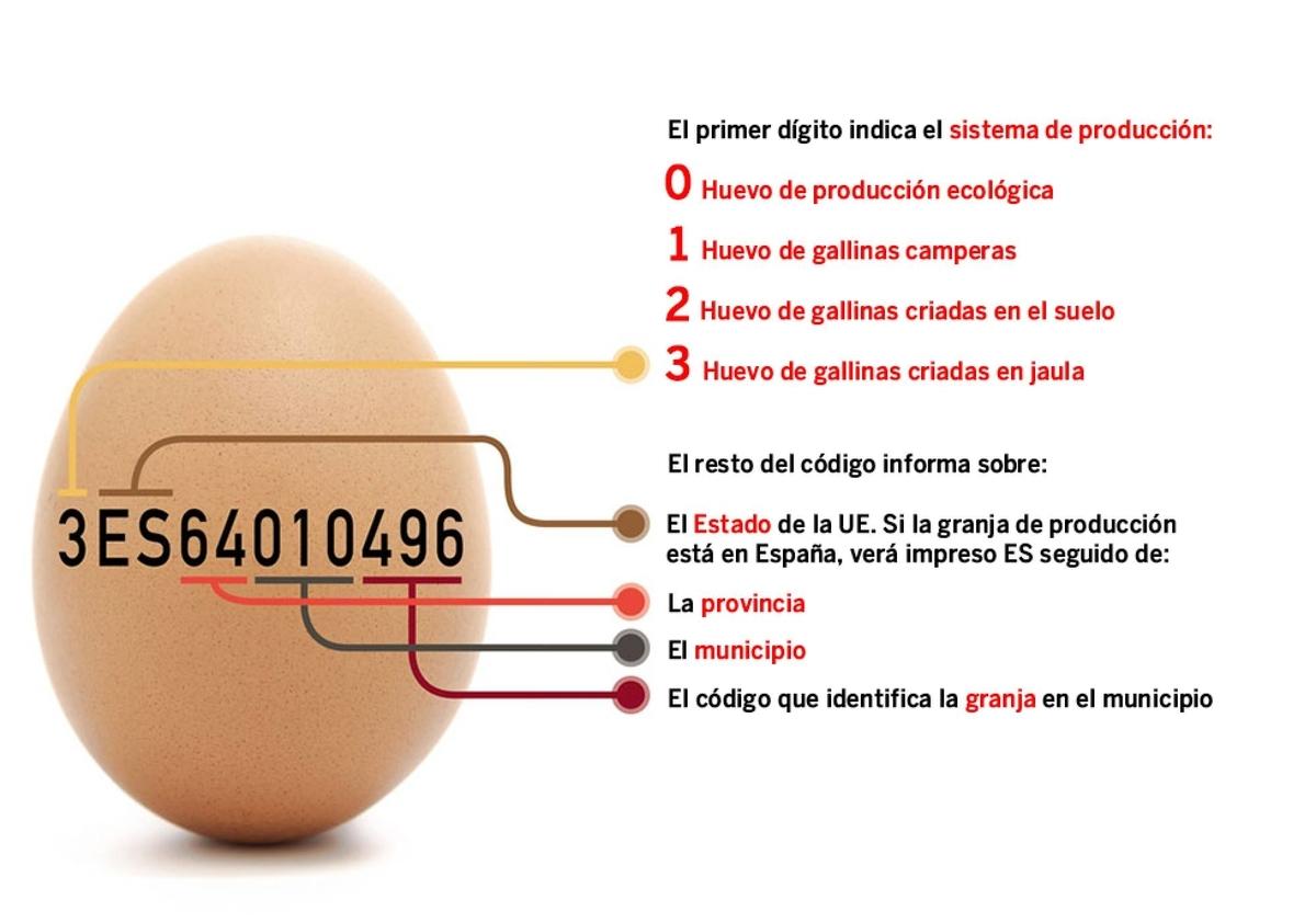 f:id:bolienda:20191209024821j:plain