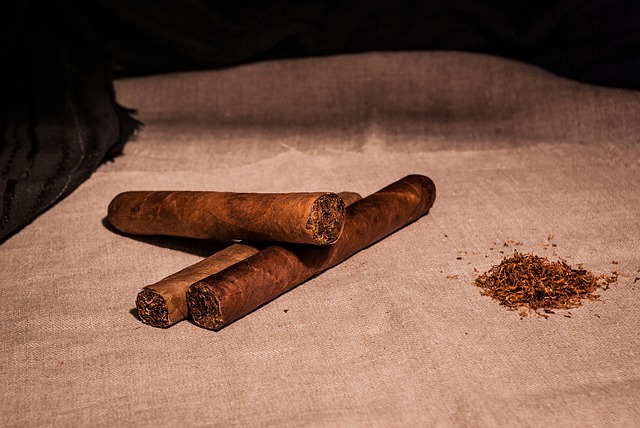 葉巻と普通のタバコってどう違う?値段は?その魅力は味や匂いを楽しむ ...