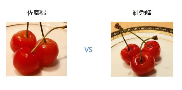 佐藤錦と紅秀峰の違い