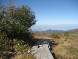 f:id:bon-ku-ra:20121101052547j:image