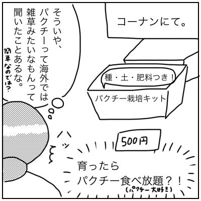 f:id:bonara:20200817174718p:plain