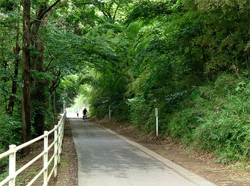 花見川CR1