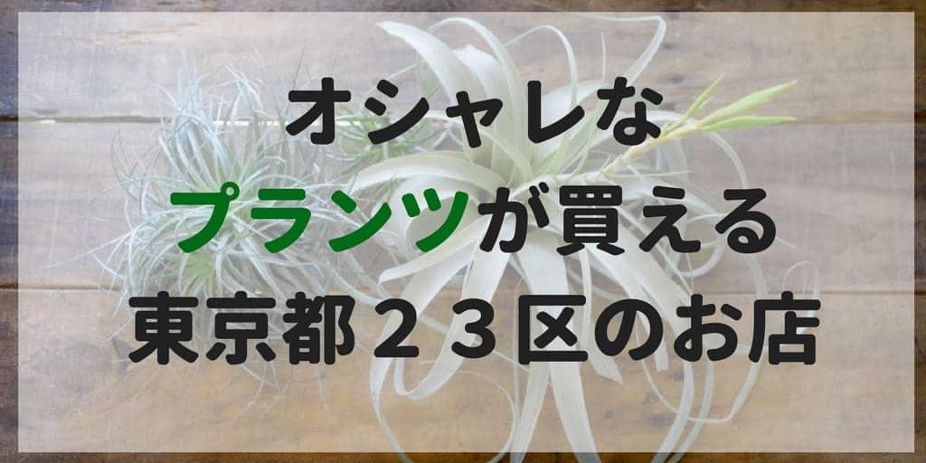 f:id:bonjinkurashi:20180517220856j:plain