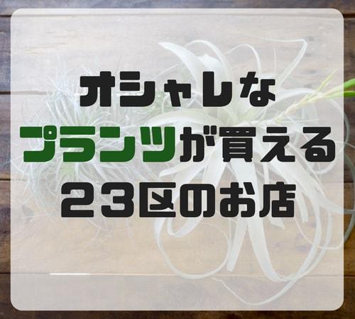 f:id:bonjinkurashi:20180526174243j:plain