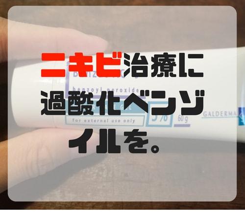 f:id:bonjinkurashi:20180707125554j:plain