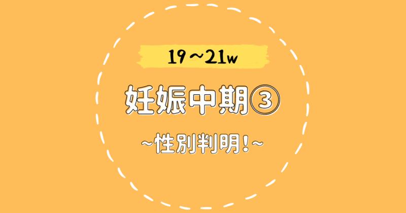 f:id:bonobonoe:20210823235350p:plain