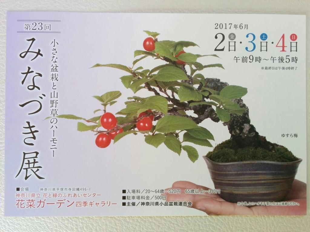 f:id:bonsaichie:20170530105446j:plain