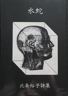 f:id:bookface:20170722144722j:plain