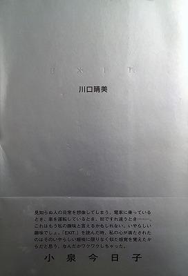 f:id:bookface:20170731235657j:plain