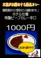 20130108190009