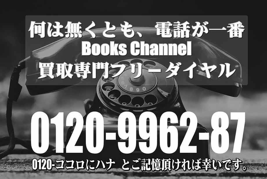 f:id:books_channel:20181115194816j:plain