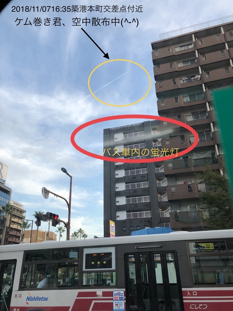 f:id:boosuka-asuka:20181108094243j:plain