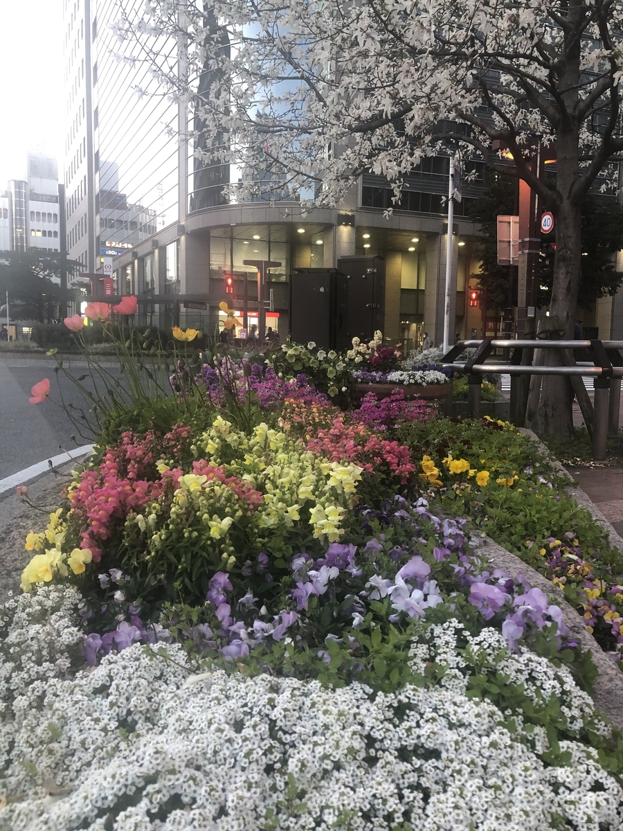 f:id:boosuka-asuka:20200312100254j:plain