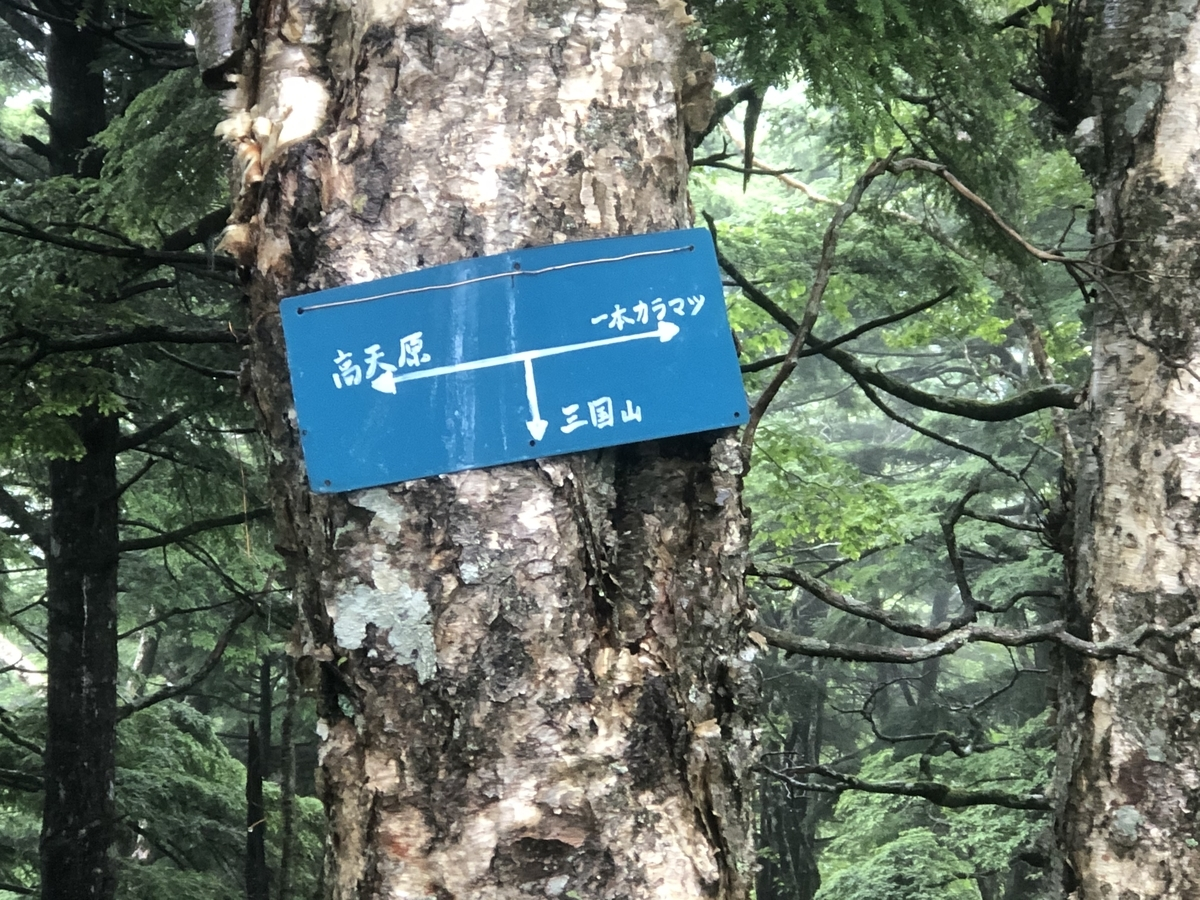 f:id:boosuka-asuka:20200730094958j:plain