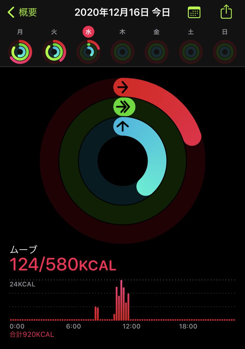 f:id:boota-no-otto:20201216220916j:plain