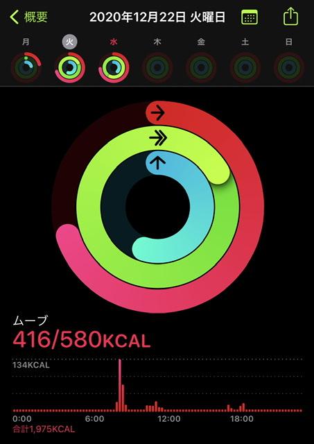 f:id:boota-no-otto:20201223223531j:plain
