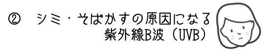 f:id:borboleta:20170530211604j:plain