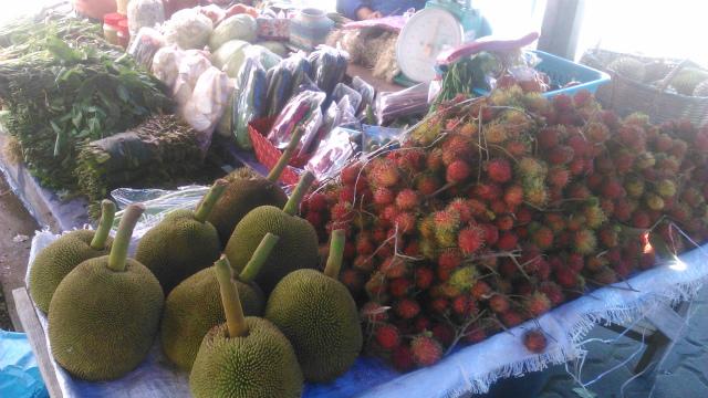 ボルネオ島の果物