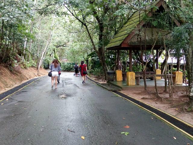 動物園内は緑に囲まれた遊歩道