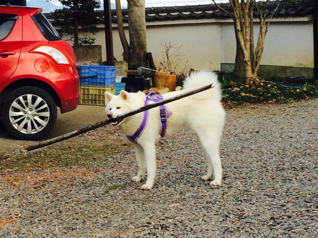 f:id:boromoufu:20161226083349j:plain