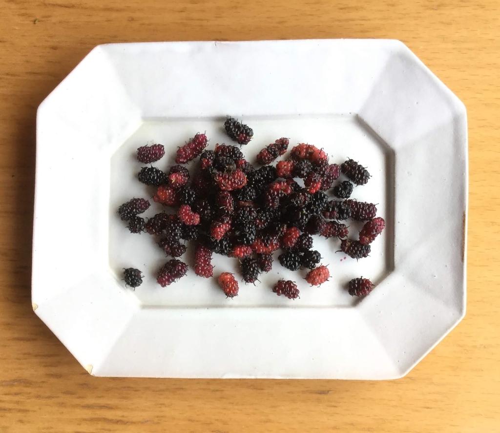 f:id:botanical-kamakura:20180915140752j:plain
